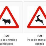 Peligros en zonas con presencia de animales sueltos