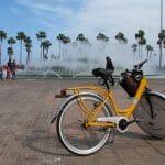 Ciclista, ¿conductor o peatón?